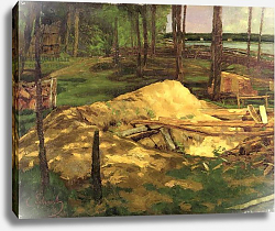 Постер Шух Карл Sawdust Pit, 1876