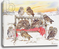Постер Уоттс Э. (совр) Little Owls on Twig Bench, 1999