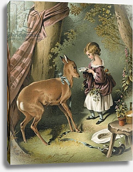 Постер Лэндсир Эдвин Girl feeding deer