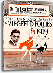 Постер Ziegfeld Sheet Music - Ziegfeld Follies Of 1919 (Oh, The Last Rose Of Summer)