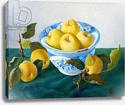 Постер Анжелини Кристиана (совр) Apples in a Blue Bowl, 2014