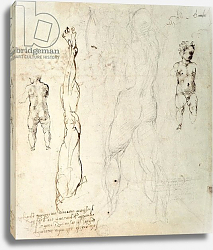 Постер Микеланджело (Michelangelo Buonarroti) Study of the Christ Child and an Anatomical Drawing with Notes