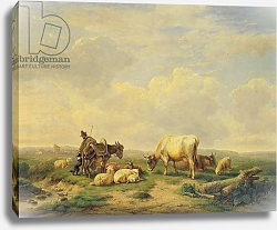 Постер Веррбекховен Евген Herdsman and Herd, c.1880