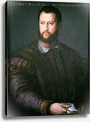 Постер Бронзино Анджело Portrait of Cosimo I de'Medici, 16th century