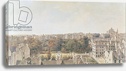 Постер Леспинасс Луи View of Paris from the Belvedere of M. Fornelle, rue des Boulangers, 1787