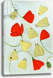 Постер Мур Меган (совр) Poppies & Moths, 2015