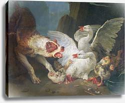 Постер Хью Жан-Батист A Dog Attacking Geese, 1769