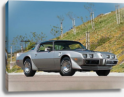 Постер Pontiac Firebird Trans Am ''10th Anniversary'' '1979