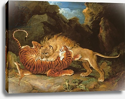 Постер Уорд Артур Fight between a Lion and a Tiger, 1797