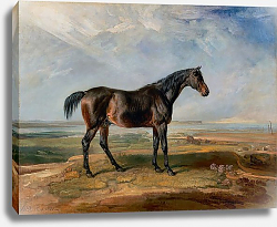 Постер Racehorse Standing in a Coastal Landscape an Estuary Beyond 1820