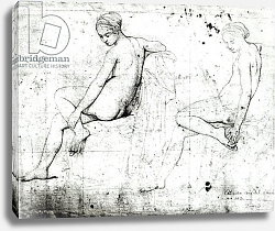 Постер Ингрес Джин Study for the Turkish Bath