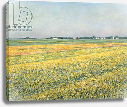 Постер Кайботт Гюстав (Gustave Caillebotte) The Plain of Gennevilliers, Yellow Fields; La plaine de Gennevilliers, champs jaunes, 1884