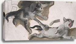 Постер Деспортес Александр Sketches of a Kitten