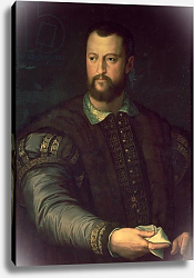 Постер Бронзино Анджело Portrait of Cosimo I de' Medici 1559