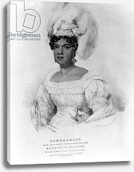 Постер Хейтер Джордж Tamehamalu, Her Majesty the Queen of the Sandwich Islands, 1824