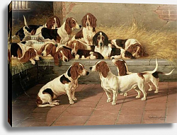 Постер Гарланд Валентин Basset Hounds in a Kennel, 1894