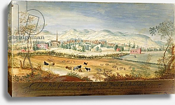 Постер Робинс Томас West Prospect of the Spa and Town of Cheltenham, 1748