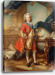 Постер Токке Луи Dauphin Charles-Louis of France