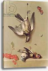 Постер Одри Жан-Батист Still Life of Dead Birds and Cherries, 1712