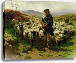Постер Бонхер Роза The Highland Shepherd, 1859
