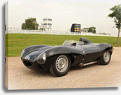 Постер Jaguar D-Type '1954–57