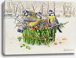 Постер Уоттс Э. (совр) Blue Tits in Leaf Nest, 1996