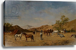 Постер Фроментин Евген An Arabian Camp, 1873