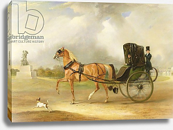 Постер Фернли Джон William Massey-Stanley Driving his Cabriolet in Hyde Park, 1833