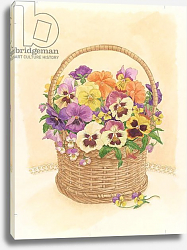 Постер Бентон Линда (совр) Basket of Pansies, 1998