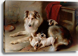 Постер Хант Уолтер A Collie with Fox Terrier Puppies, 1913