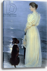 Постер Кройер Севрин Summer Evening at Skagen, the Artist's Wife with a Dog on the Beach, 1892