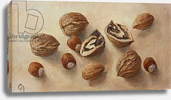 Постер Анжелини Кристиана (совр) Walnuts and Hazelnuts, 2014