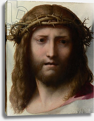 Постер Корреджо (Correggio) Head of Christ, c.1530