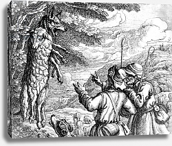 Постер Барлоу Франсис The Wolf in Sheep's Clothing, 1687