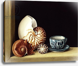 Постер Баррон Дженни Still life with Nautilus, 1998