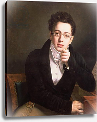 Постер Школа: Австрийская 19в. Portrait of Franz Schubert, Austrian composer, aged 17, c.1814