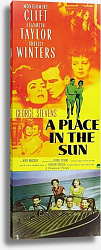 Постер Poster - A Place In The Sun