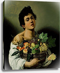 Постер Караваджо (Caravaggio) Youth with a Basket of Fruit, 1594