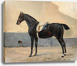 Постер Арсениус Джон Portrait of a Horse