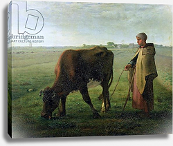 Постер Милле, Жан-Франсуа Woman Grazing her Cow, 1858