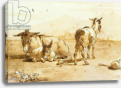 Постер Тиеполо Доменико Джованни PD.32-1959 Two Donkeys and a Goat in a Landscape