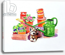 Постер Мэттьюз Диана (совр) Terrier amongst Terracotta Pots