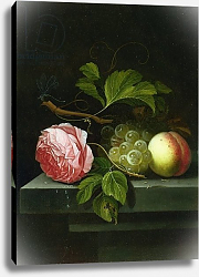 Постер Борман Иоханнес A Still Life with a Rose, Grapes and Peach, 17th century