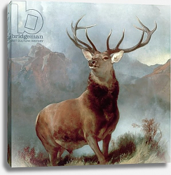Постер Лэндсир Эдвин Monarch of the Glen, 1851