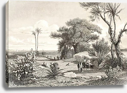 Постер Marsala surroundings, Italy. Original drawn by Henri De Chacaton, engraved by Paul Girardet. France,