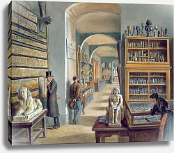 Постер Гоэбль Карл The second room of Egyptian antiquities in the Ambraser Gallery of the Lower Belvedere, 1879
