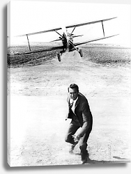 Постер Grant, Cary (North By Northwest) 4