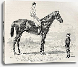 Постер Suzerain, winner of the Prix du Jockey Club (Derby) in 1868. Created by Janet-Lange and Dutheil, pub