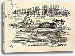 Постер Тениель Джон Alice swimming with a mouse in the pool of tears, from 'Alice's Adventures in Wonderland'
