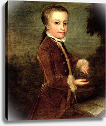 Постер Зоффани Йоханн Portrait of Wolfgang Amadeus Mozart aged eight, holding a bird's nest, 1764-65